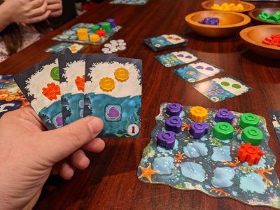 Reef is a great game for family game night.